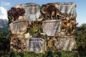 Dinosaur Facts - Natural History Museum