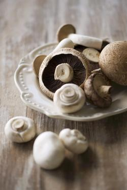 Chestnut Mushrooms and White Button Mushrooms by Dirk Pieters