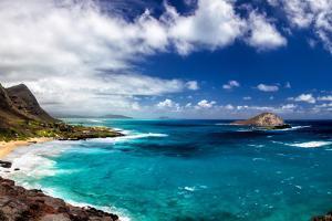 Coastal Landscape Near Makapuu Beach at the East Coast of Oahu, Hawaii, USA by Dirk Rueter