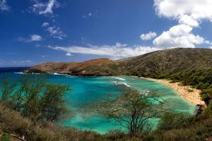 View over Hanauma Bay, a Popular Beach and Snorkeling Spot on Oahu, Hawaii, USA by Dirk Rueter