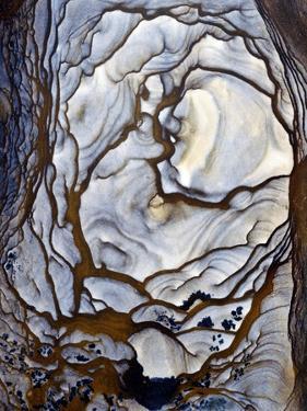 Blue Biggs Jasper Stone by Dirk Wiersma