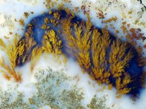 Moss Agate by Dirk Wiersma