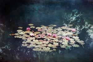 Waterlilies by Dirk Wuestenhagen