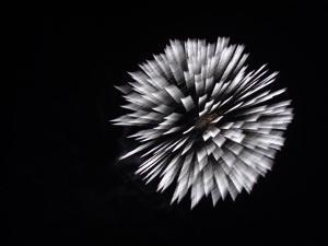 Display of Elaborate Fireworks Illuminating the Night Sky