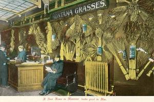 Display of Montana Grasses
