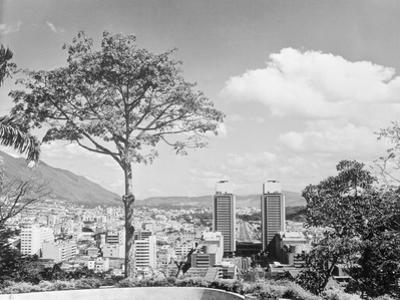 Distant View of Buildings of Caracas