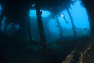 Diver Exploring the Liberty Wreck, Tulamben, Bali, Indonesia