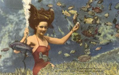 Diving Girl, Weekiwachee Spring, Florida
