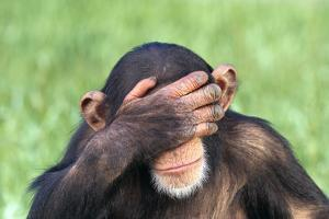 Chimpanzee Covering Eyes with Hand by DLILLC