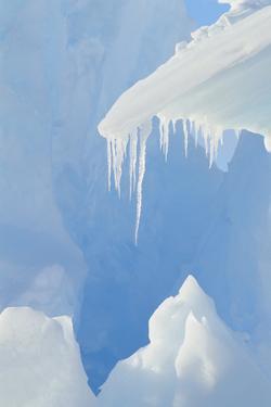 Iceberg by DLILLC
