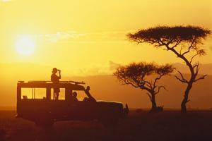 Looking for Animals on Safari by DLILLC