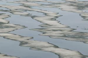 Melting Sea Ice by DLILLC