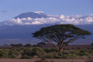 Mount Kilimanjaro by DLILLC