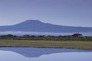 Mount Kilimanjaro by DLILLC