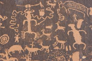 Petroglyphs at Newspaper Rock by DLILLC