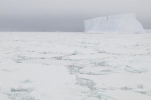 Sea Ice with Iceberg by DLILLC
