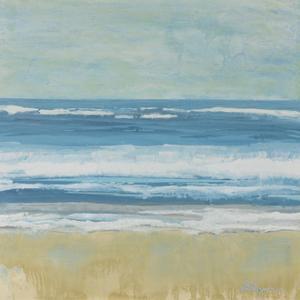 Puddle Beach by Dlynn Roll