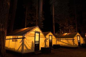 Tent Cabins Glow at Curry Village in Yosemite National Park by Dmitri Alexander