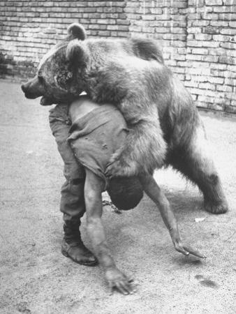 An Iranian Performace of a Man Wrestling a Bear in Public by Dmitri Kessel