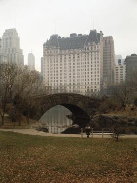 View from Central Park with Plaza Hotel in the Distance by Dmitri Kessel