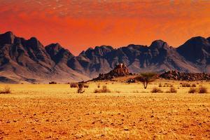 Colorful Sunset in Namib Desert, Namibia by DmitryP
