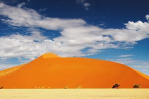 Dunes of Namib Desert by DmitryP