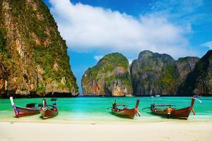 Tropical Beach, Maya Bay, Thailand by DmitryP