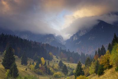 Rock of the King, Piatra Craiului National Park, Transylvania, Carpathian Mountains, Romania