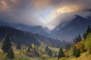 Rock of the King, Piatra Craiului National Park, Transylvania, Carpathian Mountains, Romania by Dörr