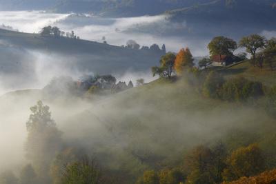 Rural Landscape with Morning Mist Near Zarnesti, Transylvania, Carpathian Mountains, Romania