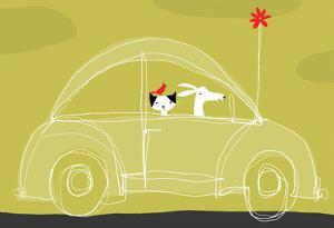 Dog, Cat, Bird in Car