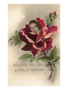 Dolores Del Rio, Mexican Star