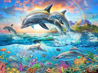 https://imgc.allpostersimages.com/img/posters/dolphin-family_u-L-Q11TV610.jpg?artPerspective=n