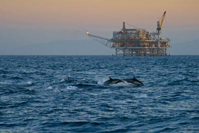 https://imgc.allpostersimages.com/img/posters/dolphin-pod-leap-near-oil-derrick-catalina-channel-california-usa_u-L-PN6YEA0.jpg?p=0
