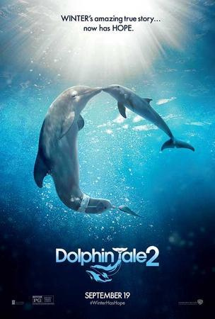 https://imgc.allpostersimages.com/img/posters/dolphin-tale-2_u-L-F7SGWH0.jpg?artPerspective=n