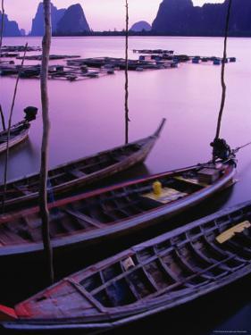 Longtail Boats Bob against Mooring Sticks at Sunset, Ko Panyi, Phang-Nga, Thailand by Dominic Bonuccelli