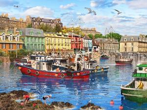 Cob Harbour by Dominic Davison