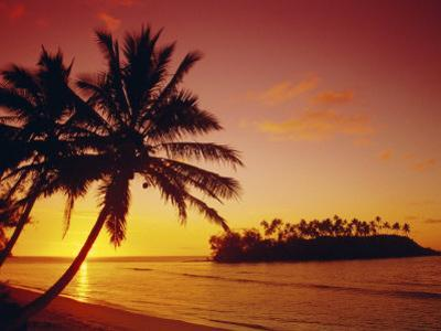 Silhouette of Palm Trees and Desert Island at Sunrise, Rarotonga, Cook Islands, South Pacific