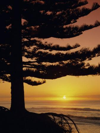 Sunrise, Pine Beach, Gisborne, East Coast, North Island, New Zealand, Pacific