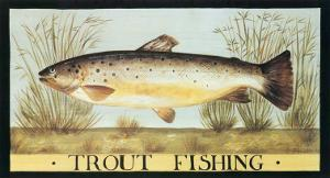 Trout Fishing by Dominique Perotin
