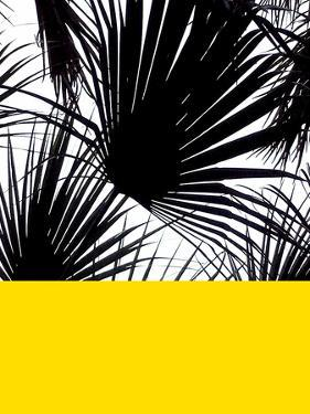 Blacvk&Wh_PalmLeaves_Yellow.jpg by Dominique Vari