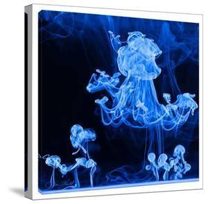 Aqua Luminescence by Don Farrall