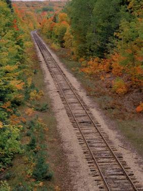Railroad Tracks Between Autumn Foliage, MI by Don Grall