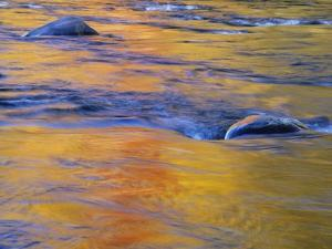 Autumn Reflections on Little White River, Elliot Lake, Ontario, Canada by Don Johnston