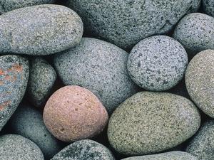 Detail of Pebbles on Long Island, Nova Scotia, Canada by Don Johnston
