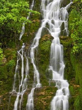 Waterfall Cascading Down Cliffside Along the Coast of the Gulf of St. Lawrence, Gaspe Peninsula, La by Don Johnston