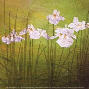 Garden Delights II by Don Li-Leger