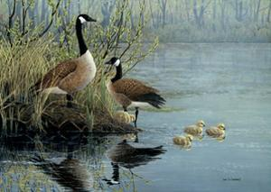 Geese In Spring by Don Li-Leger