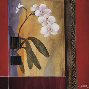 Orchid Lines I by Don Li-Leger