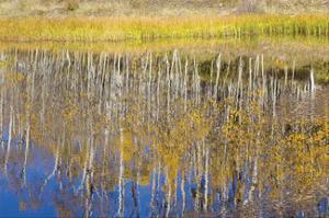 Chriss Lake by Don Paulson